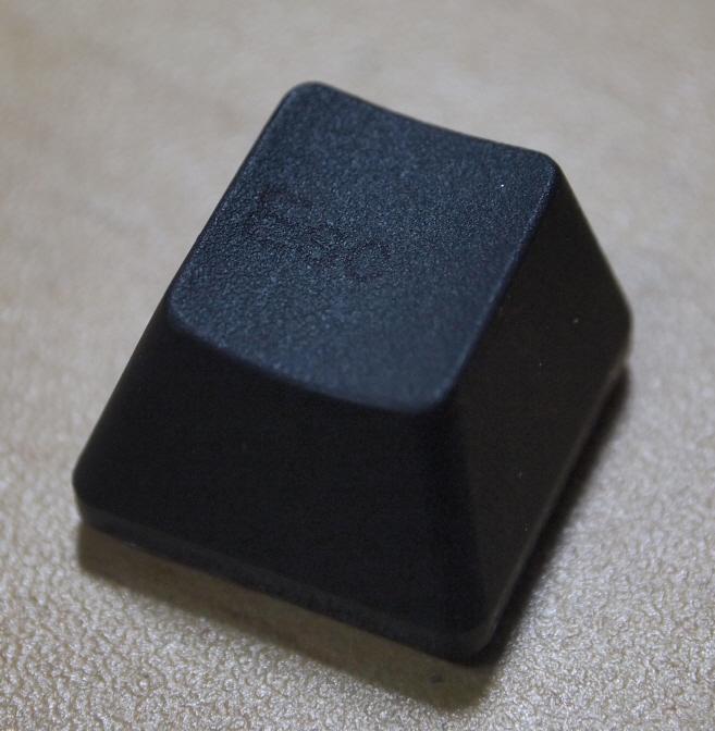 P6151576.JPG